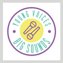 youngvoicesbigsounds.org